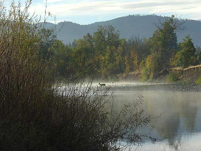 Cave Junction Oregon Pictures
